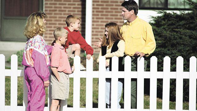 Соседи по участку общаются