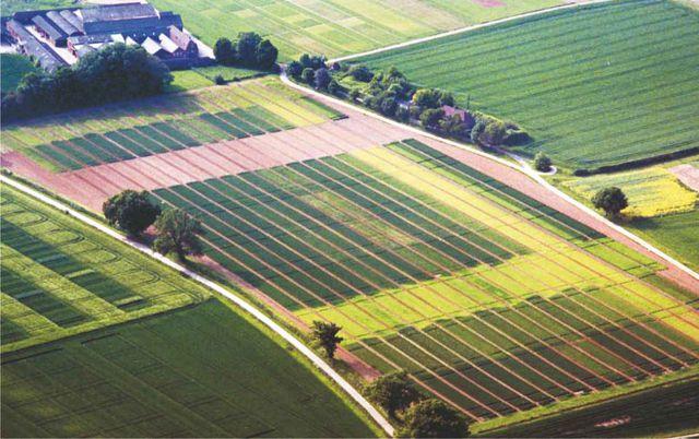 Территориальное зонирование земли