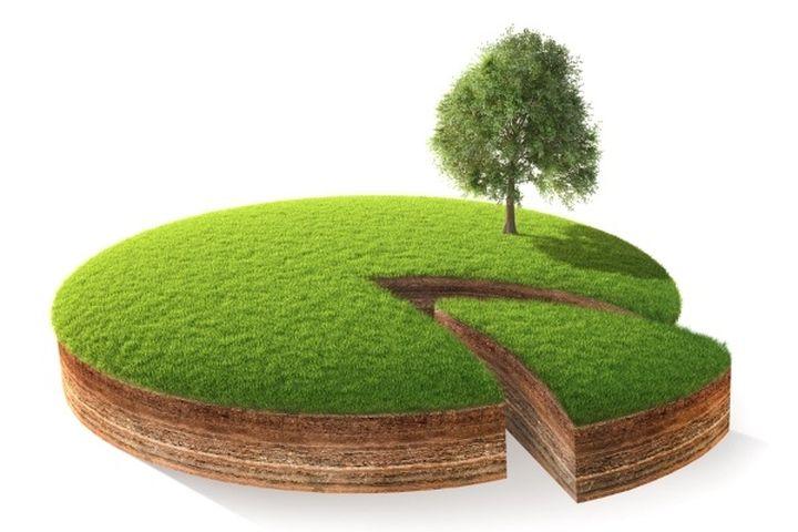 Совместная собственность на землю